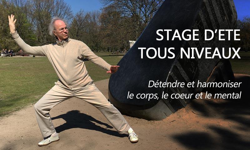 bannière-stage-ete-2019