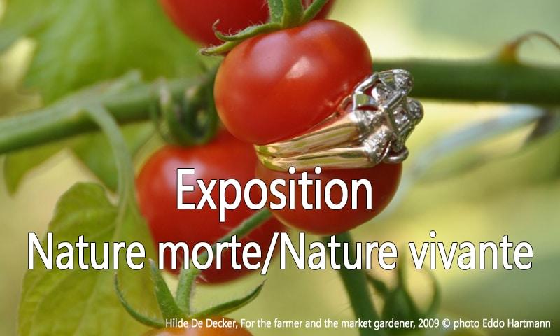 bannière expo nature nature