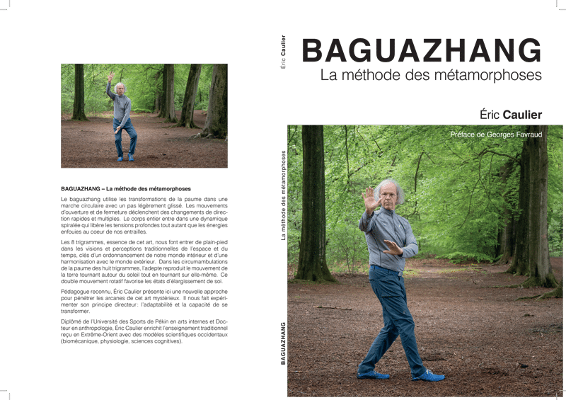 BaguazhangCover
